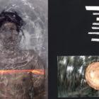 Teresa del Romero-módulos de fotografía